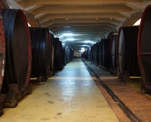 Balkans største vinproducent, Tikvesh VINREJSE MAKEDONIEN