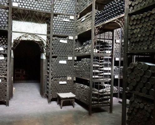 På besøg hos Tikvesh forbudte vinkælder