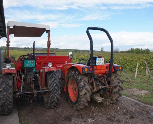 Vinrejse Makedonien Vinmarker Winery Popov