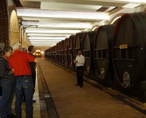 Vinrejse Makedonien Vinkælderen Winery Tikves
